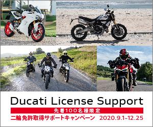 08_License_DLR_300x250